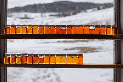 Daily Syrup Samples