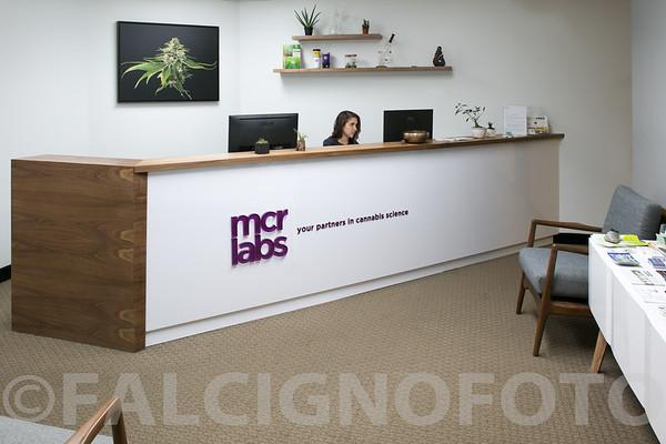 FalcignoFoto-MCR-HiRes-0053