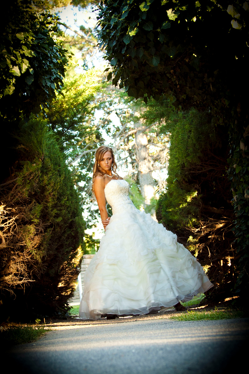 top San Fransisco wedding photographers