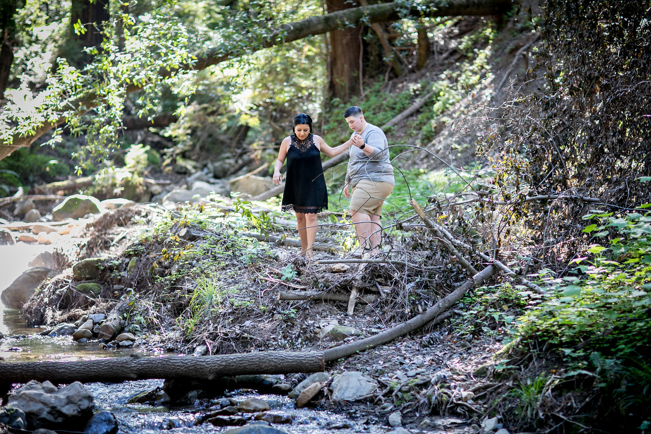 Brittany and Natalie Engagement session, Stanford engagement photos, Saratoga Spring Engagement photos, Saratoga engagement photographers, Saratoga wedding photographers