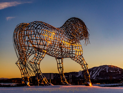 Bromont  cheval  montagne