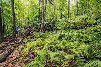 Mt Bernard  sentier pédestre sentier vélo