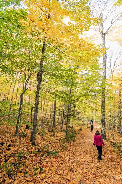 Parc Naturel du Lac Gale<br /> employés de la Ville de Bromont<br /> automne <br /> couleurs<br /> DNLG