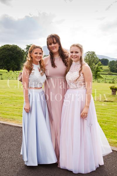 BHS Prom 2017-59