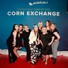 CornEx FRI 1st XMAS17 81