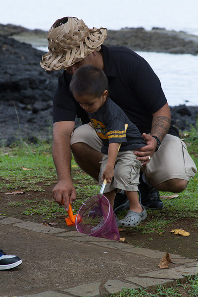 WAL_Hilo_2013_11_07_LJM_1751_low_res