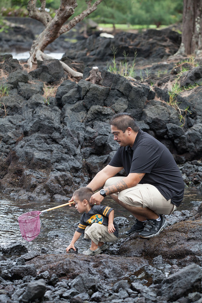 WAL_Hilo_2013_11_07_JLH_0727_low_res