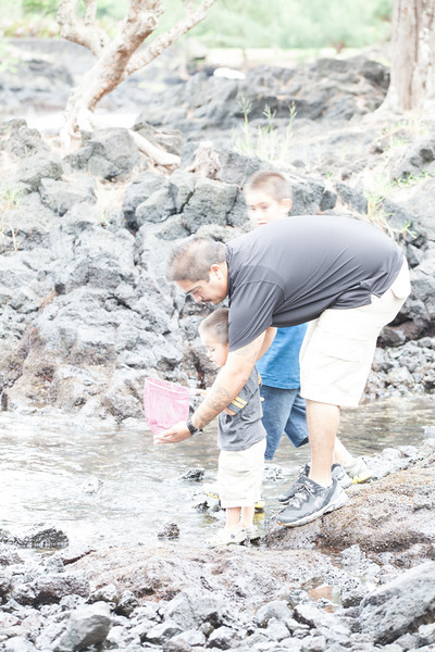 WAL_Hilo_2013_11_07_JLH_0731_low_res