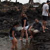 WAL_Hilo_2013_11_07_JLH_1122_low_res
