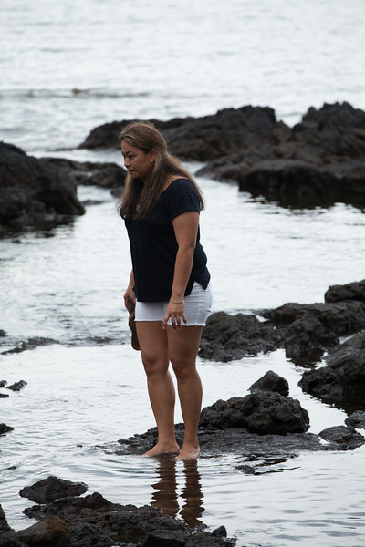 WAL_Hilo_2013_11_07_JLH_1137_low_res