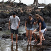 WAL_Hilo_2013_11_07_JLH_1103_low_res