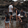 WAL_Hilo_2013_11_07_JLH_1119_low_res