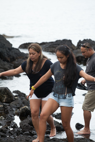 WAL_Hilo_2013_11_07_JLH_1153_low_res