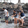 WAL_Hilo_2013_11_07_JLH_1108_low_res