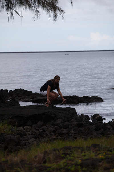 WAL_Hilo_2013_11_07_JLH_1157_low_res