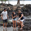 WAL_Hilo_2013_11_07_JLH_1113_low_res