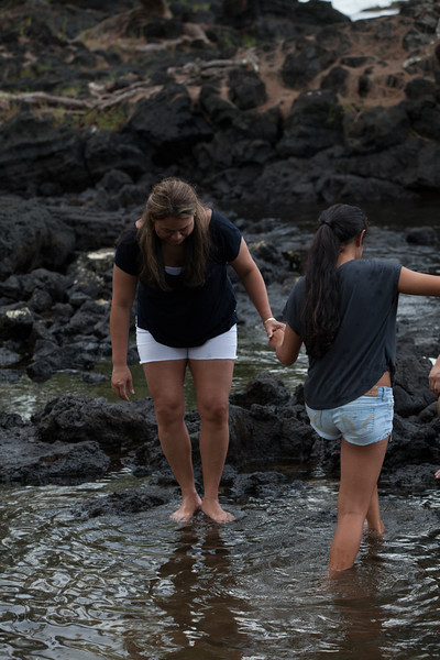 WAL_Hilo_2013_11_07_JLH_1131_low_res