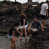 WAL_Hilo_2013_11_07_JLH_1121_low_res