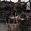 WAL_Hilo_2013_11_07_JLH_1123_low_res