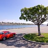 Something nice under the tree<br /> 1964 Porsche 356C 2000GS<br /> Long Beach, CA