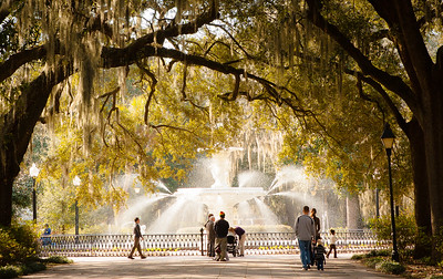 Savannah 2__MG_1269r LR