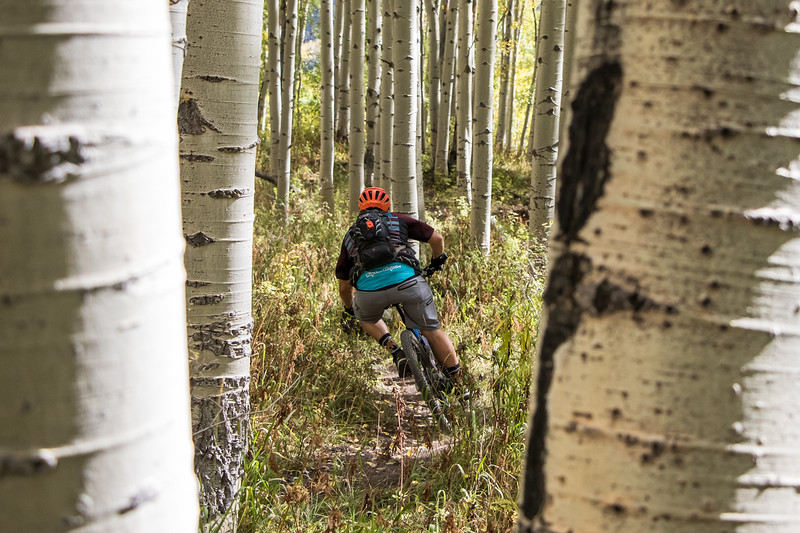 IMAGE: https://photos.smugmug.com/Clients/Chasing-Epic-Crested-Butte-Fall-Trip-Sept-17/i-bCgNgmx/0/b6d96dc5/L/CBFall17-18-L.jpg