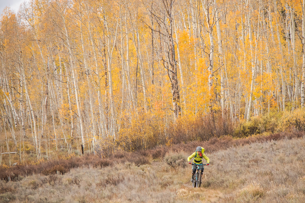 IMAGE: https://photos.smugmug.com/Clients/Chasing-Epic-Crested-Butte-w-The-Singletrack-Sampler-Oct-18/i-XjCLJq4/0/6e256e60/XL/CB-STS18-12-XL.jpg