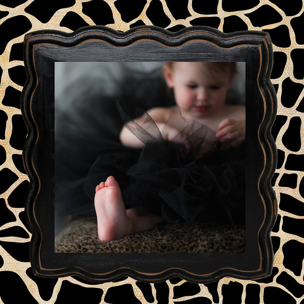 cheetah frame