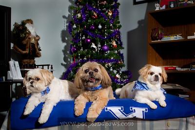 Chewy, Bernie Tu and Sally on 12.11.2011