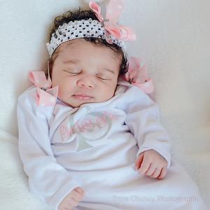 Baleigh's Newborn Portraits 032214