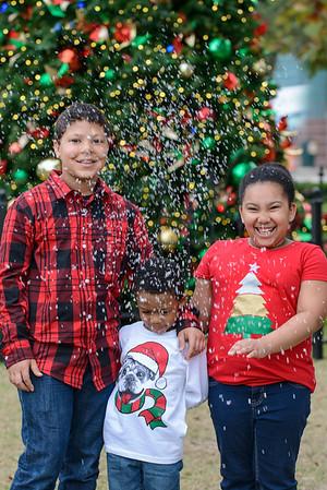 Grandchildren's Christmas Pictures 122214