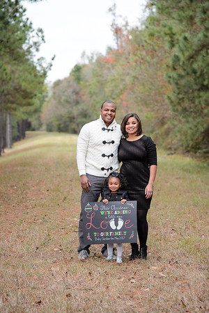 The Gardner's Christmas Portraits 121016
