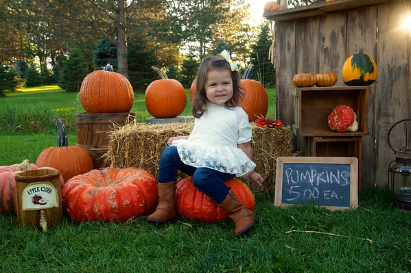 Ahna Pumpkin