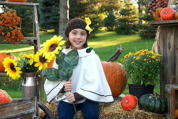 Darby pumpkin