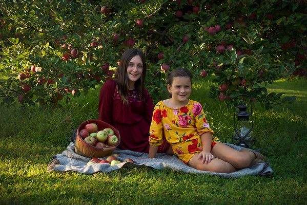 Bogacz apple orchard