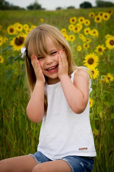 Houghton Sunflower session