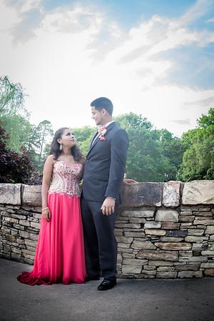 Erin_Prom2015-15