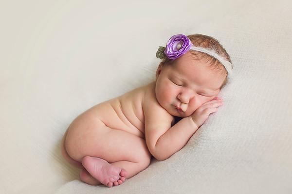 Allie Newborn