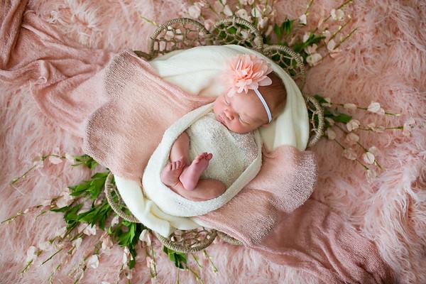 Aurora Newborn