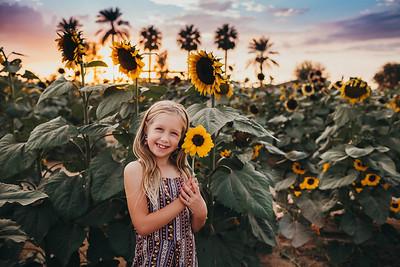 Sunflower- SunshynePIx-6363