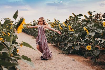 Sunflower- SunshynePIx-6423