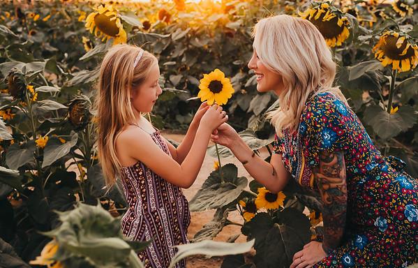Sunflower- SunshynePIx-6319