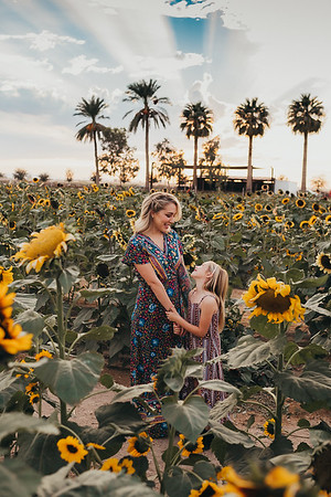 Sunflower- SunshynePIx-6167