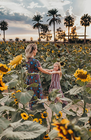 Sunflower- SunshynePIx-6140