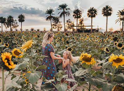Sunflower- SunshynePIx-6153