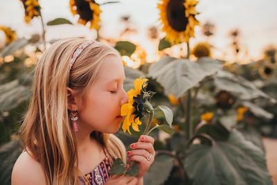 Sunflower- SunshynePIx-6353