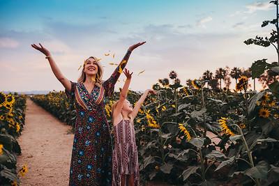 Sunflower- SunshynePIx-6488