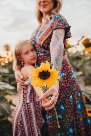 Sunflower- SunshynePIx-6347