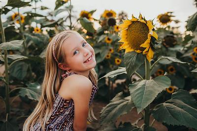 Sunflower- SunshynePIx-6220