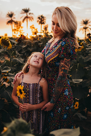 Sunflower- SunshynePIx-6332